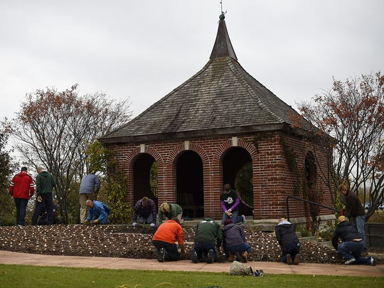 UW-Green Bay students and employees help plant thousands of Spring bulbs as part of their Make A Difference Day activities at the Green Bay Botanical Garden on Friday, Oct. 23, 2015.