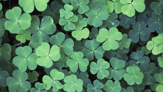 The St. Patrick's Day Celebration of Aging is from 10 a.m. to 1 p.m. Tuesday at Gadsden Street United Methodist Church.