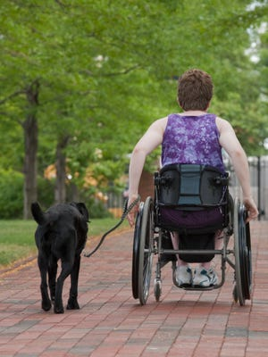 SB 1040 would allow courts to fine people who misrepresent service dogs $250.