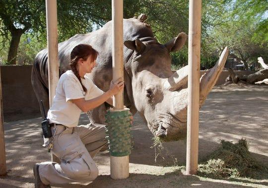Phoenix Zoo Keepers Work Hard To Satisfy Feral Foodies