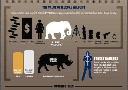 Illegal Wildlife Trade Threatens International Security