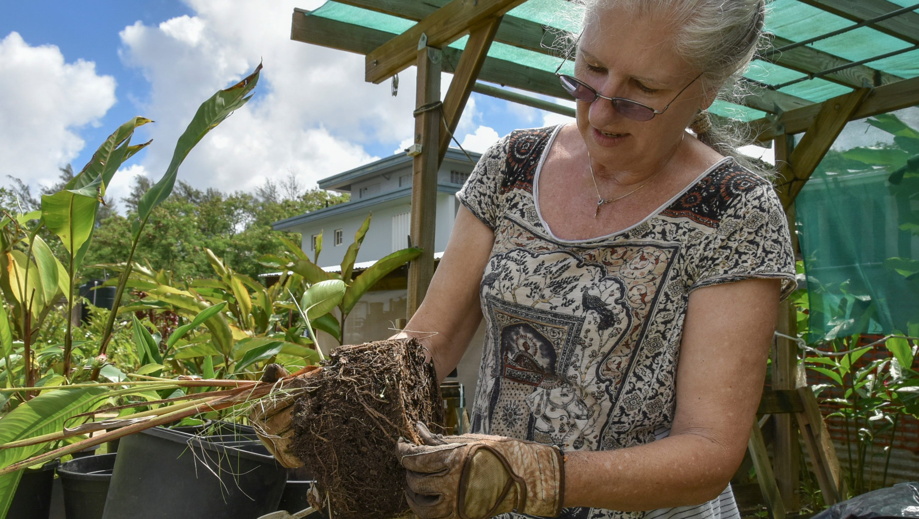 Flex Your Green Thumb Shannon Murphy Offers Tips On Growing A Garden