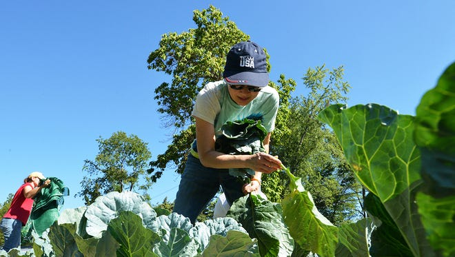 USDA is encouraging new farmers and ranchers to get into the agriculture industry.