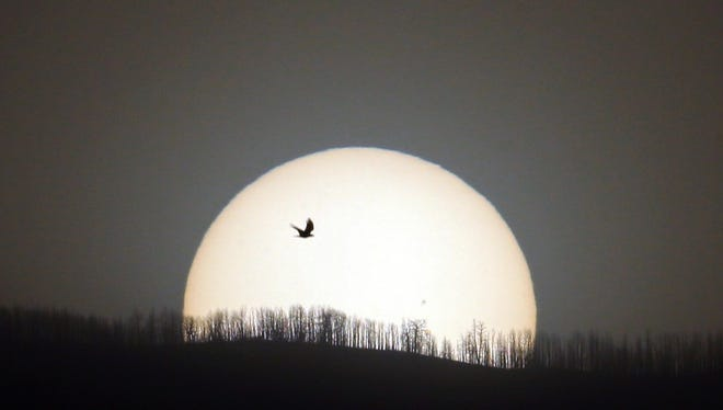 """Mimicking Icarus of Greek mythology, a raven appears to be flying close to the sun as """"Big Red"""" sinks behind the mountains of Lincoln County."""