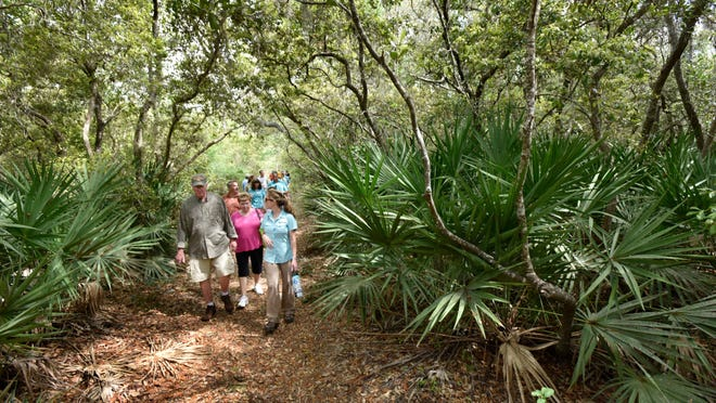 The Bogey Creek Preserve has a trail system, shown in this May 2019 photo, that the North Florida Land Trust wants to expand by buying an adjacent 12 acres.