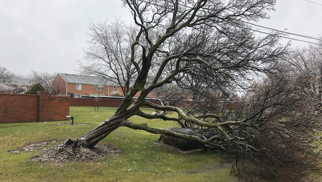 Freezing rain was no match for this tree in St. Clair Shores. Downed trees and powerlines have caused widespread power outages across metro Detroit on Sunday, April 15, 2018.