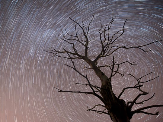 epa06332694 A rotated long exposure photograph shows a tree standing under the starred sky during a Leonids meteor shower in Villanueva de la Pena, in the northern region of Cantabria, Spain, 15 November 2017 (issued 16 November).  EPA-EFE/Pedro Puente Hoyos ORG XMIT: GRAF233