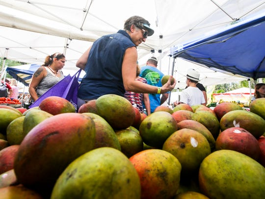 Debbie Haggett of Cape Coral picks a mango out as she shops at the 20th annual MangoMania in 2016.