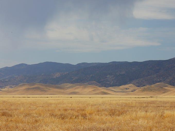 The 204,000-acre Carrizo Plain National Monument has