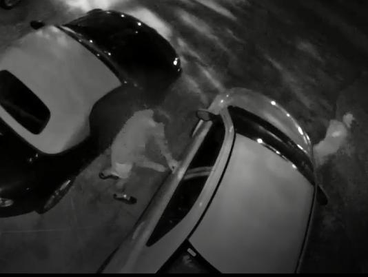 Car burglars