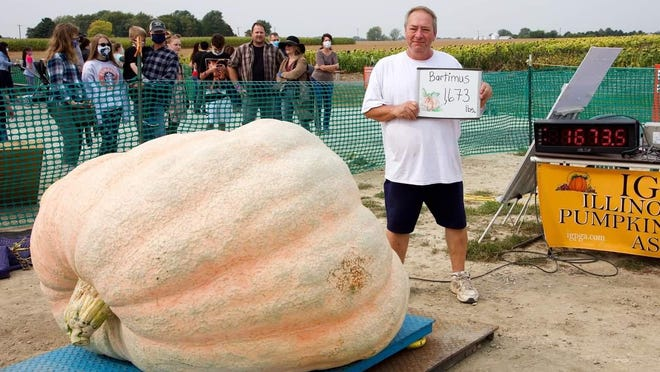 Henry Bartimus Baitman, of Clinton will have his 1,673 pound pumpkin on his trailer for viewing and photos at Gail's Pumpkin Patch.