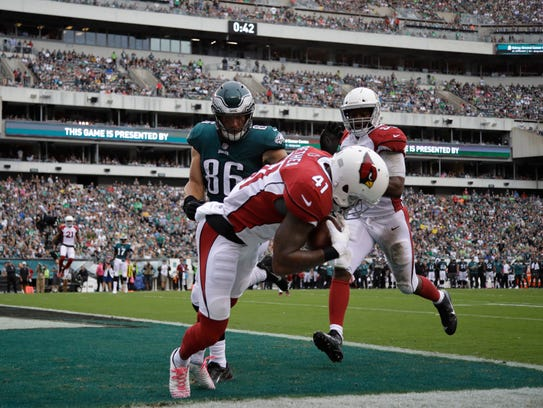 Arizona Cardinals' Antoine Bethea (41) intercepts a