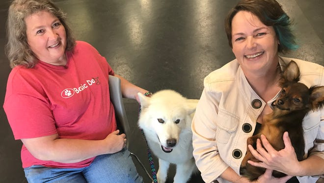 Sarah Thuot (left), with her dog, Mauya, an Alaskan malamute, and Candy Wieloch, holding her dog, Marshall, a Russian toy terrier, are starting a dog training program that aims to help veterans with PTSD and other problems.