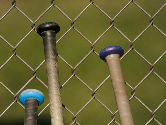 BaseballBats.JPG