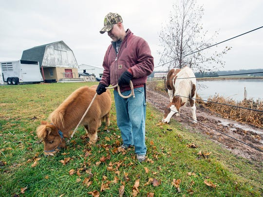 Rick Phillips walks a miniature horse at a farm in Straban Township with Shining Star Therapeutic Ministries. Phillips volunteers with the program, helping to care for the horses.