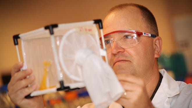 Biology professor Immo Hansen works in his laboratory where he carries out research on mosquitoes.