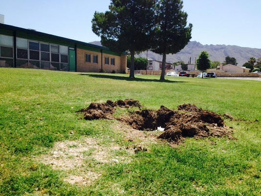 Red oak tree missing from Putnam Elementary planted in honor of slain Constable White.