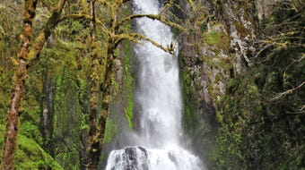 A trek among the Coast Range's most beautiful waterfalls on Kentucky Falls Trail and North Fork Smith River Trail.