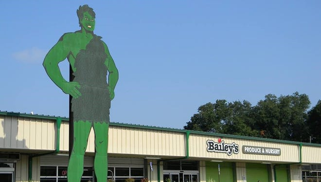 The 25 foot Green Giant sign sits outside Bailey's Farmers Market.