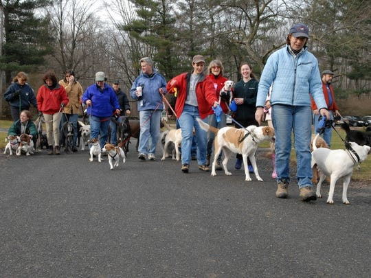 Nancy Williams (right) and Petey lead the dog walk at Lord Stirling. The one-hour walk goes through 14 miles of wooded paths, fields and trails.