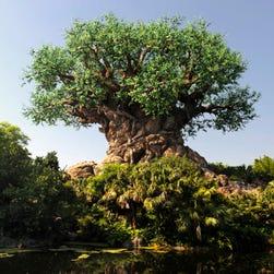 Disney's Animal Kingdom at 20: Imagineer Joe Rohde on the park's history and future