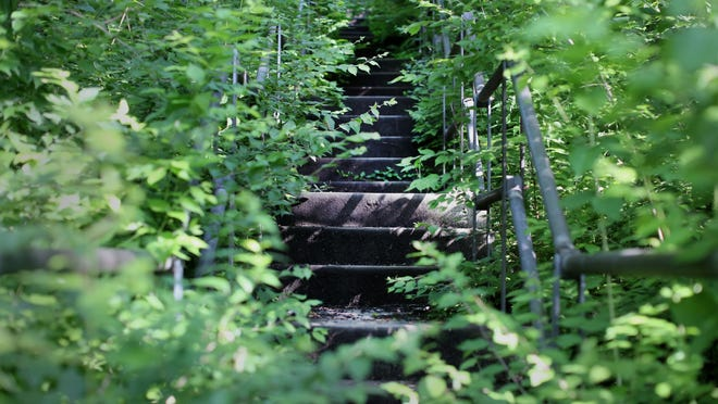 Sycamore Street Stairway is open, but abandoned, and is in poor condition. It goes from Vine Street to Bellevue Park.