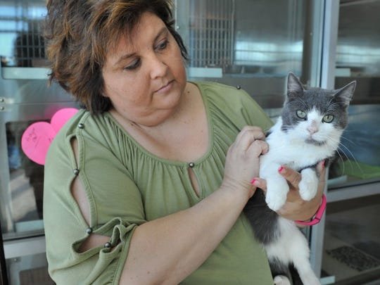 Times Record News file photo Wichita Falls Animal Service Center Administrator Katrena Mitchell holds 1-year-old, gray and white Andy in the lobby of the facility on Hatton Road.