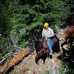 Back Country Horsemen volunteers Ron Marshall, left, of Salem, and Norm Kaser, of Silverton, work to remove a fallen tree from the Duffy Lake Trail as they approached the lake in the Willamette National Forest on June 25 near Marion Forks.