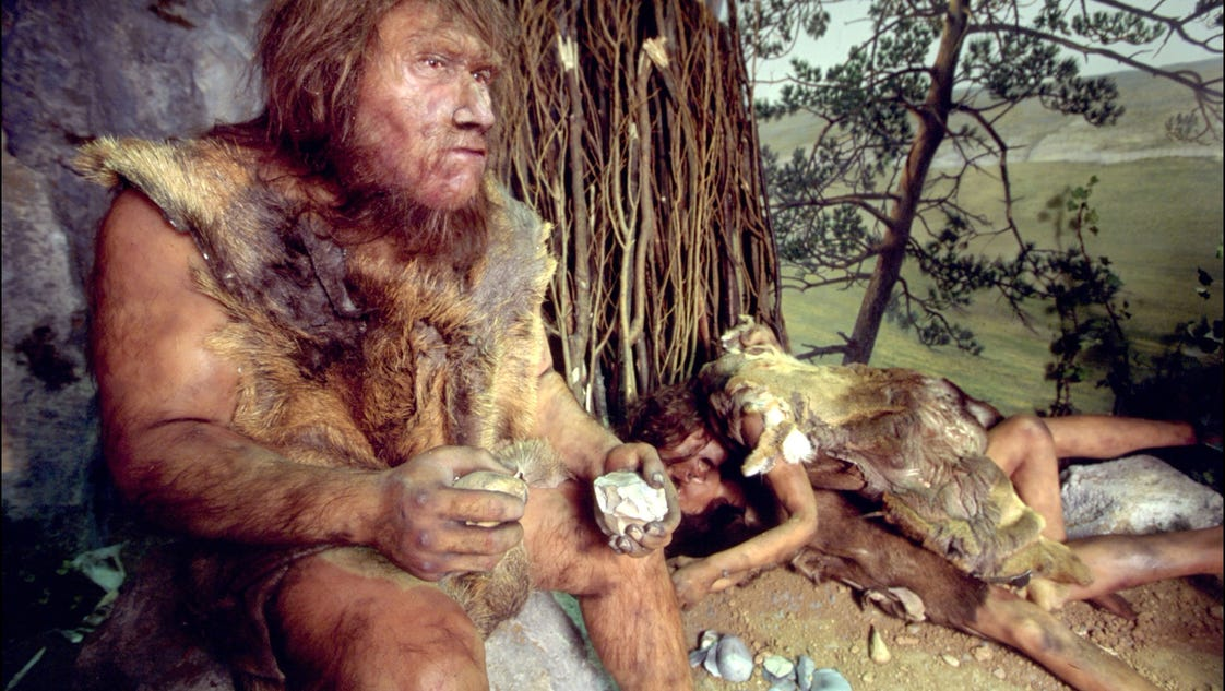 neanderthal human mixing had gene benefits drawbacks
