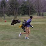 'I did par the hole': Prep golfer shares tale behind viral goose attack