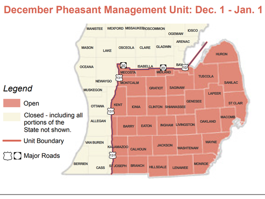 December Pheasant hunting in red sections of Michigan is open from Dec. 1 - Jan. 1.
