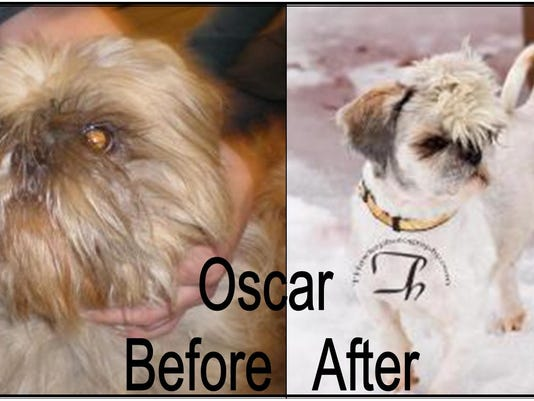 Oscar before and after