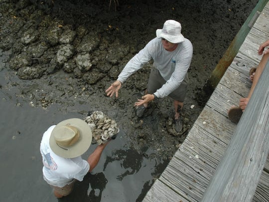 Members of the St. Lucie County Reef builders pile up sacks of oyster shells contributed by area restaurants to create new oyster reefs.