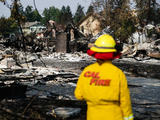 A Cal Fire employee surveys damage in the Coffey Park