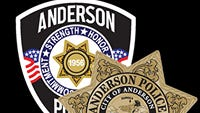 Anderson police logo
