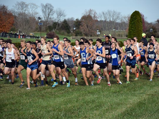 Members of Fort Defiance's boys team compete in the Class 3 boys race at the VHSL cross country championships on Saturday, Nov. 11, 2017, at Great Meadow in The Plains, Va.