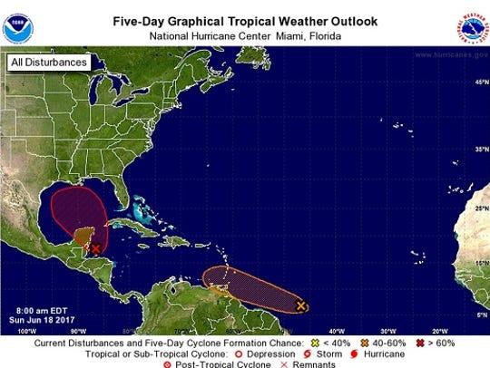 Tropical wave prediction