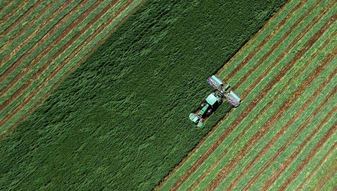 A farmer cuts a hay field south of Farley, Iowa.