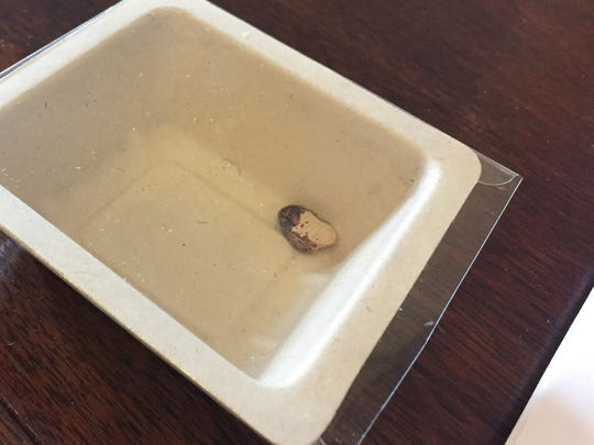 Incoming Lt. Gov. David Zuckerman, who is an organic farmer, left an heirloom bean on each senator's desk during Thursday's inauguration ceremonies.