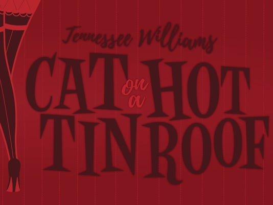 636118031895291424-cat-on-a-hot-tin-roof.jpg