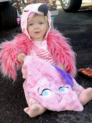 Ryleigh Paetzold, 18 months, donned a flamingo costume for Halloween.