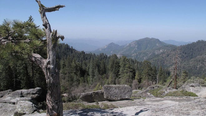 The view from Beetle Rock in Sequoia National Park in May 2012.