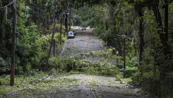 Hermine swept through Tallahassee, tearing down trees, knocking down power lines and leaving many residents in need of roof repair, tree removal and a cool hotel.