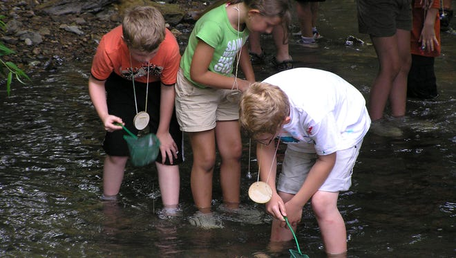 "Kids get their feet wet searching for nature's wonders  and exploring Antietam Creek during Renfrew Institute's summer program, ""Nose to Nose with Nature."" The program runs this summer on Wednesdays through July 27."
