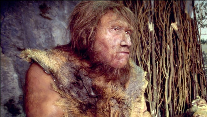 A museum in Quinson, France, shows a   reconstruction of the environment of a Neanderthal man in the mid-Paleolithic period (80,000 BC).  New research finds Neanderthal and early human interbreeding likely had both positive and negative effects on the human genome.