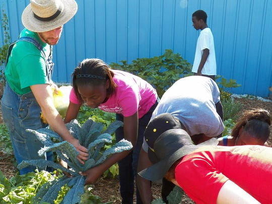 Community gardens are introducing fresh vegetables in need areas.