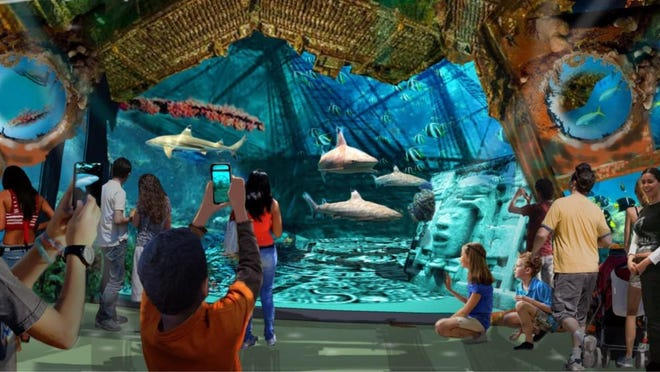 Treasures of Cortez focuses on the Sea of Cortez and brings a 200,000-gallon shark tank and other aquatic exhibits to The Living Desert as part of a new 25-year master plan that was outlined for the Palm Desert City Council on Thursday.