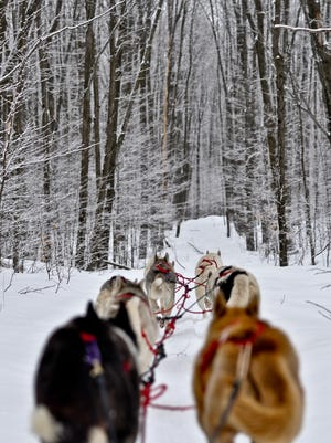 Located in Bayfield, Wolfsong Adventures in Mushing offers day and evening sled dog trips as well as a tour with an overnight camping option.