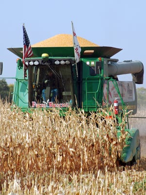 """National Crop Insurance Services: """"Given crop insurance's success and popularity, it is disheartening that GAO recently recommended weakening farmers' primary risk management tool."""""""