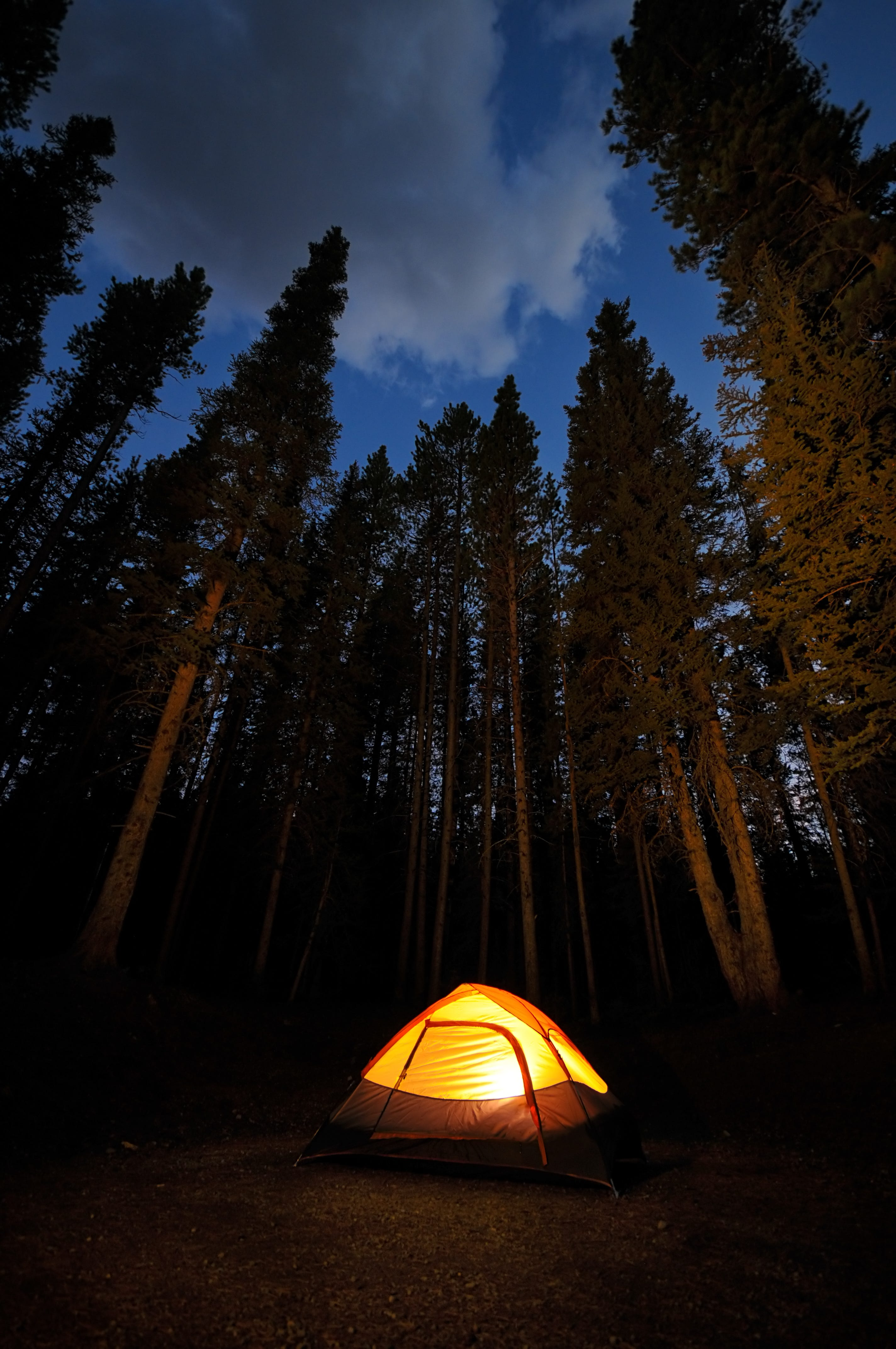 & Free camping at Finger Lakes National Forest